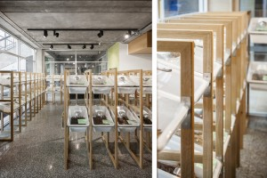 Cafe - Self Help Food Displays - Koush - Flinders Uni