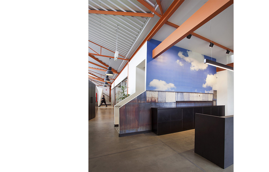 wellness and lifestyles - reception custom wallpaper - koush - norwood